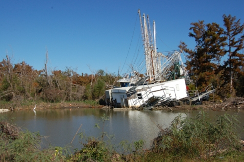 Wrecked boats near Venice, LA.
