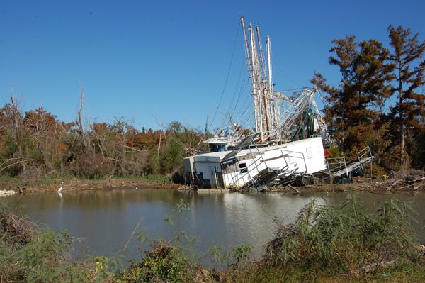 Wrecked boats near Venice, LA.