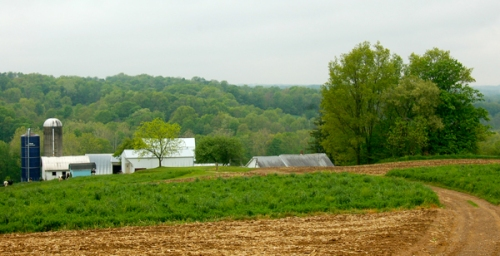 Hershberger farm