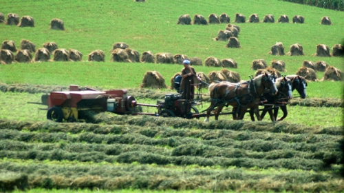 Baling hay by Bruce Stambaugh