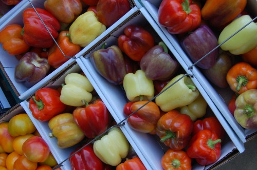 Mixed peppers by Bruce Stambaugh