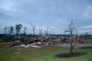 Debris and stripped trees at the OARDC by Bruce Stambaugh