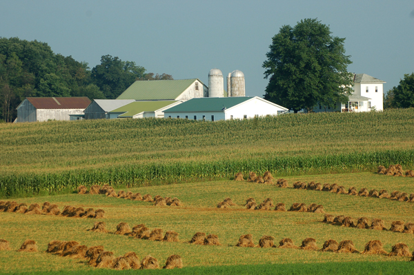 Amish farm Ohio by Bruce Stambaugh
