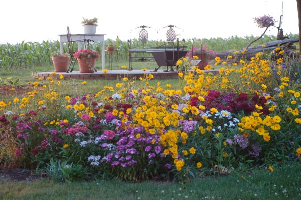 Wildflower garden by Bruce Stambaugh
