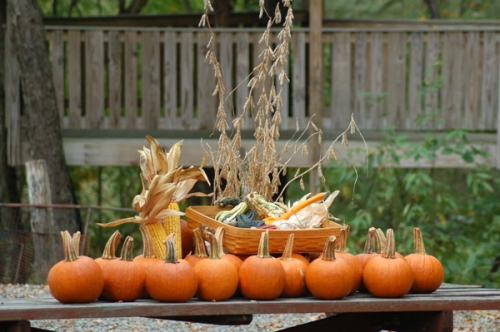 Fall display of pumpkins by Bruce Stambaugh