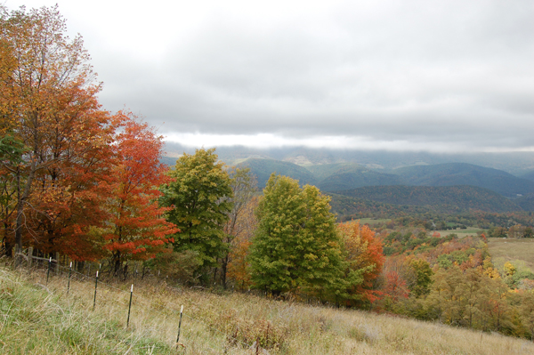 Fall in West Virginia by Bruce Stambaugh