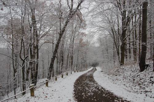 Snowy lane by Bruce Stambaugh