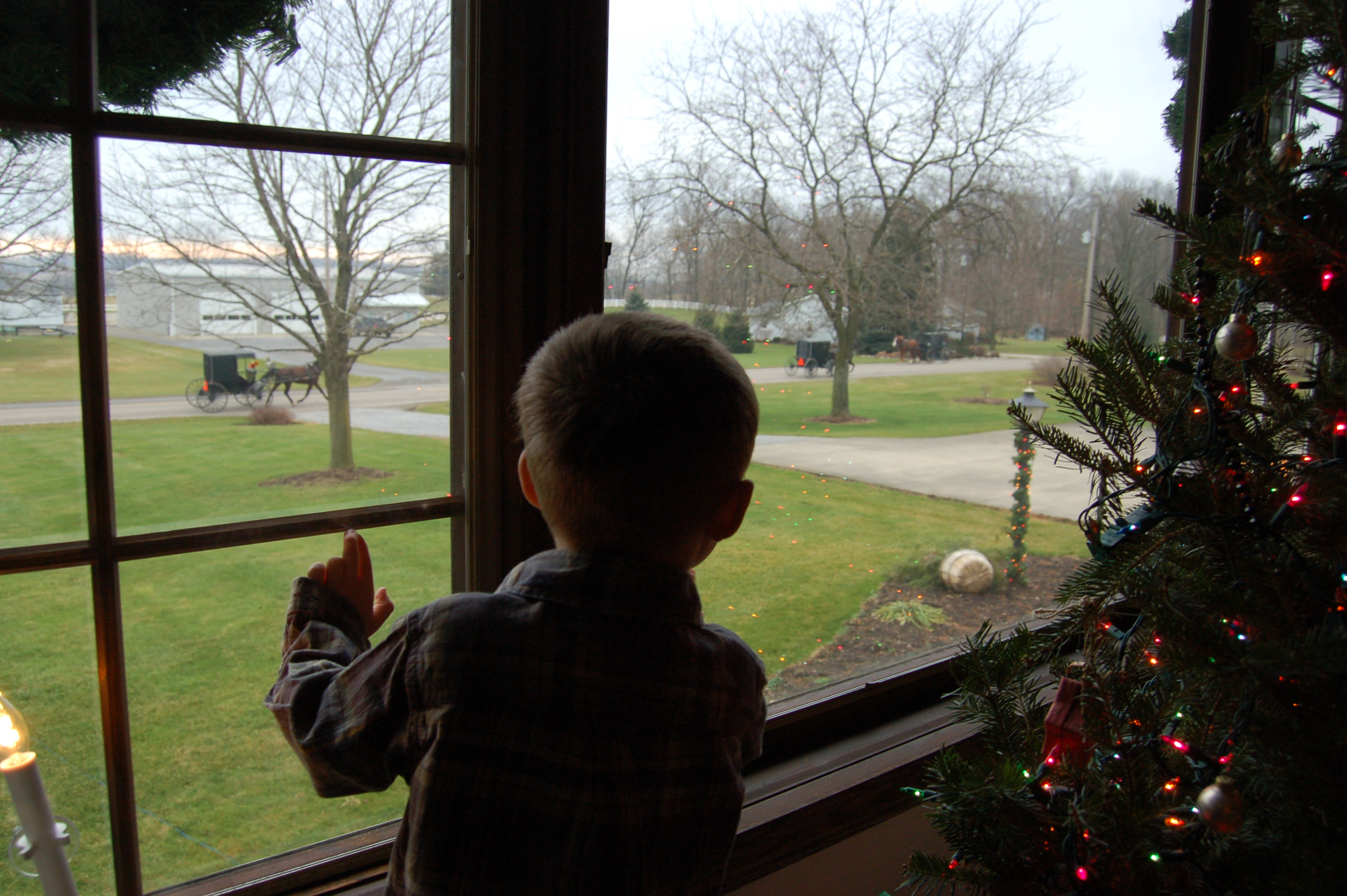 Watching for buggies on Christmas Day by Bruce Stambaugh