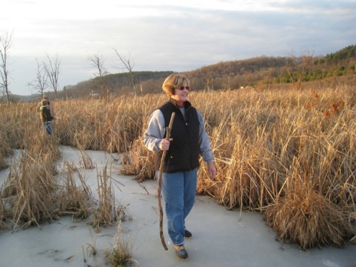 swamp walk by Bruce Stambaugh