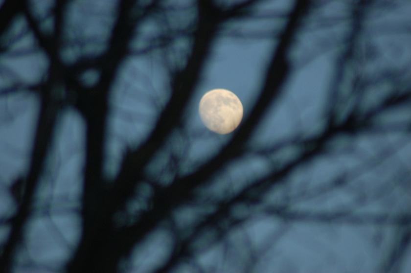 Full moon by Bruce Stambaugh