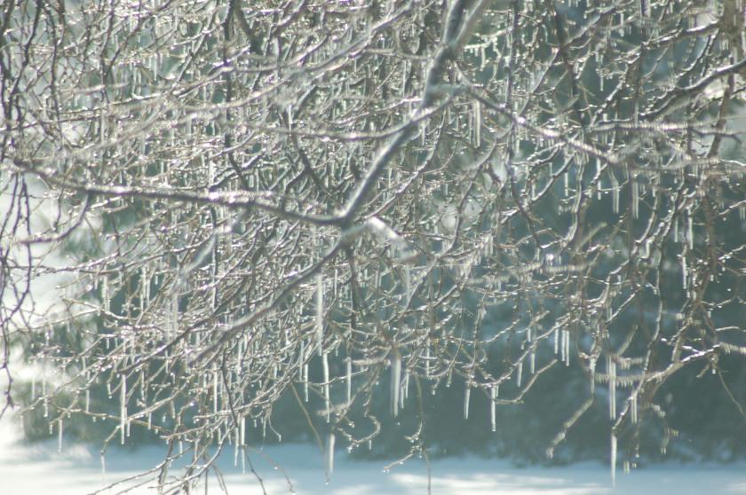 Ice sparkles by Bruce Stambaugh