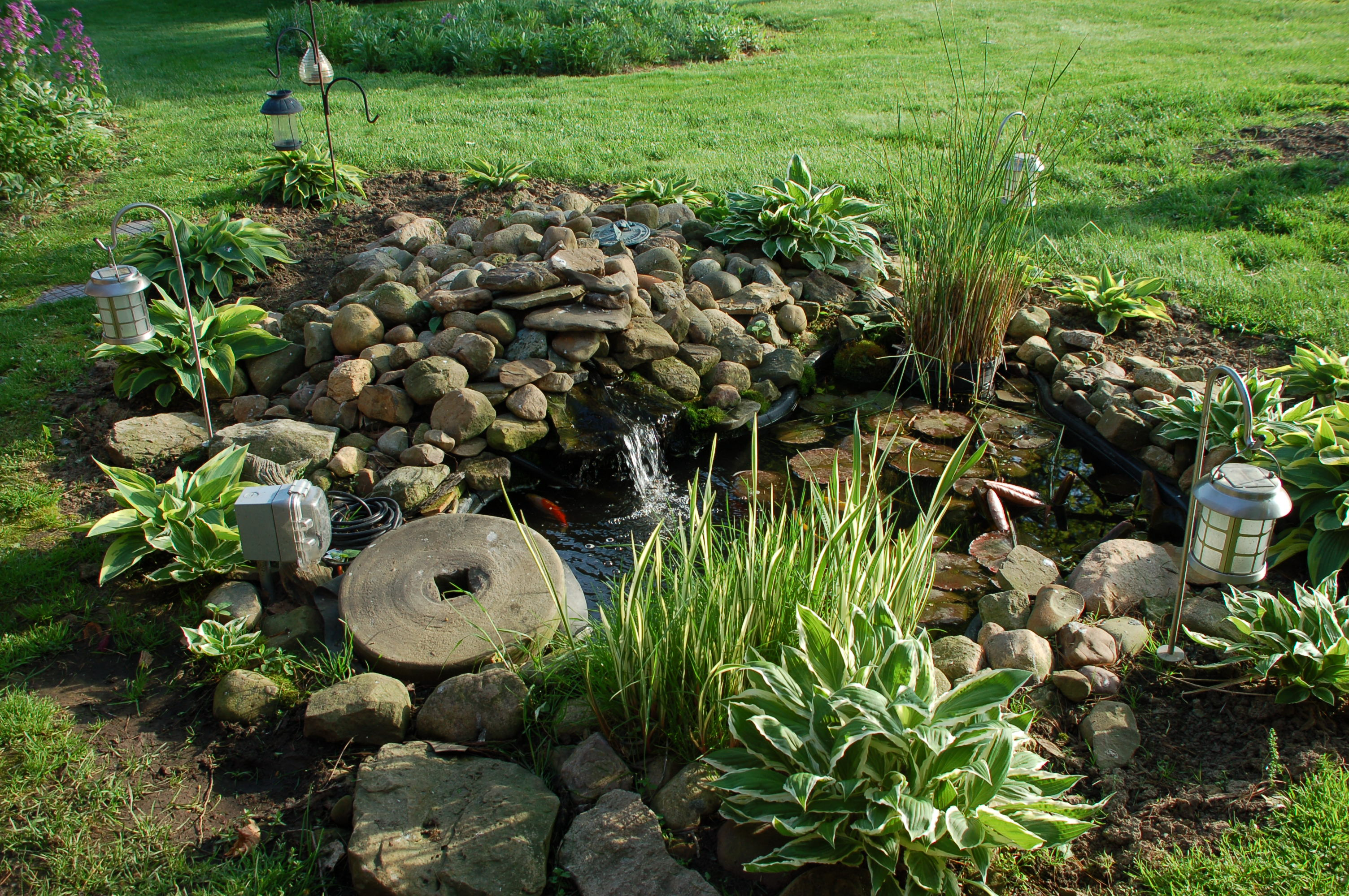 A long answer to a simple question roadkill crossing for Garden pond questions