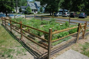 Lakeside community garden by Bruce Stambaugh