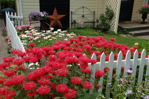 Lakeside, Ohio flower garden by Bruce Stambaugh