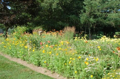 Flower garden by Bruce Stambaugh