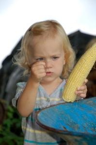 Corn silk by Bruce Stambaugh