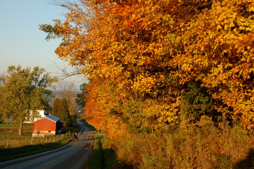 Amish country fall by Bruce Stambaugh