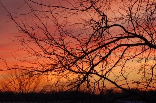 January sunrise by Bruce Stambaugh