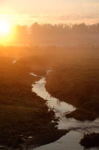 Creek at sunrise by Bruce Stambaugh
