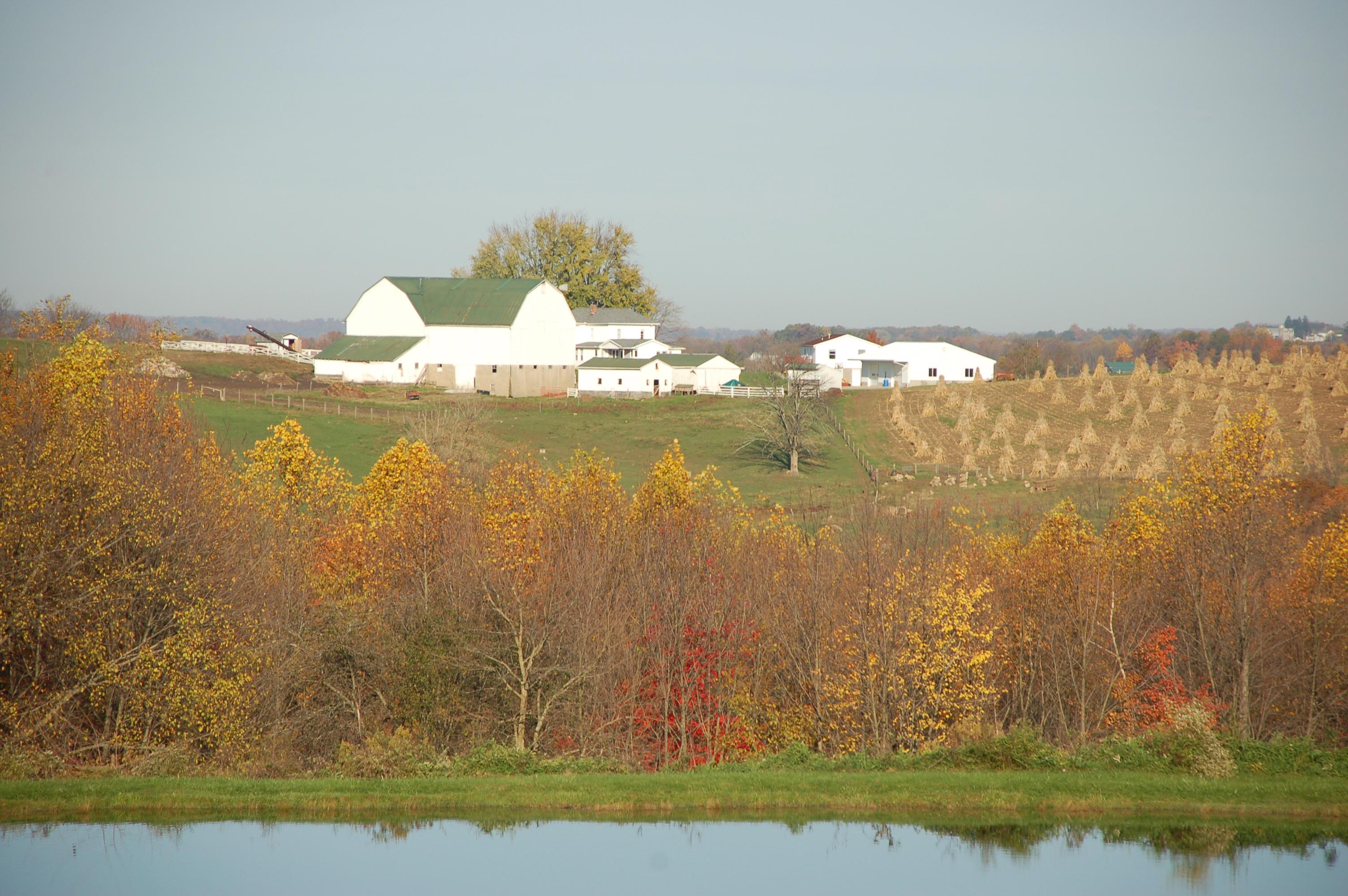 Amish farm fall by Bruce Stambaugh