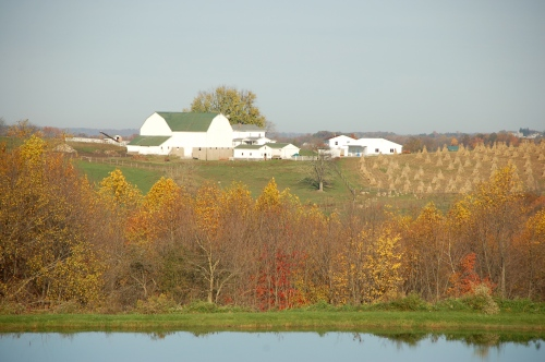 Amish farm fall by Bruce Stambaugh