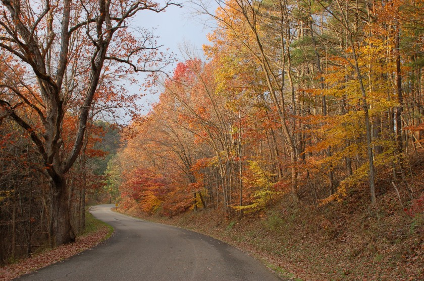 Fall lane by Bruce Stambaugh