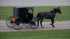 Amish buggy by Bruce Stambaugh