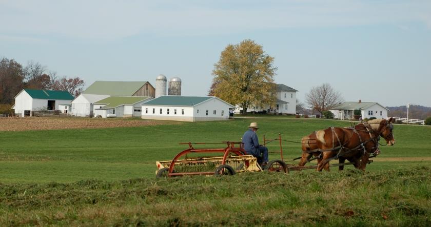Fall haying by Bruce Stambaugh