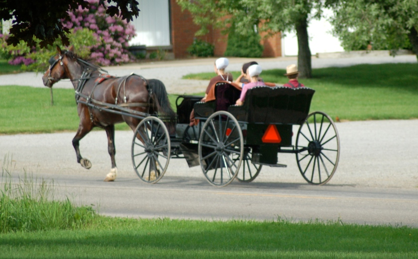 Open buggy by Bruce Stambaugh