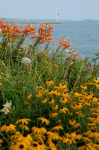 Lakeside flowers by Bruce Stambaugh