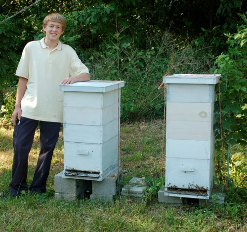 Bee hives by Bruce Stambaugh