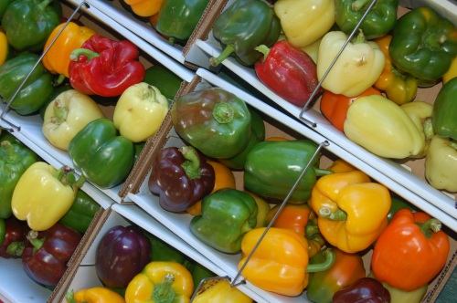 Rainbow of peppers by Bruce Stambaugh