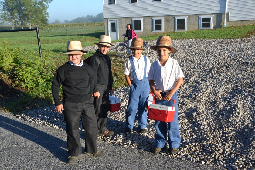 Amish scholars by Bruce Stambaugh