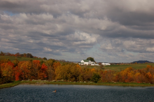 Fall scene by Bruce Stambaugh