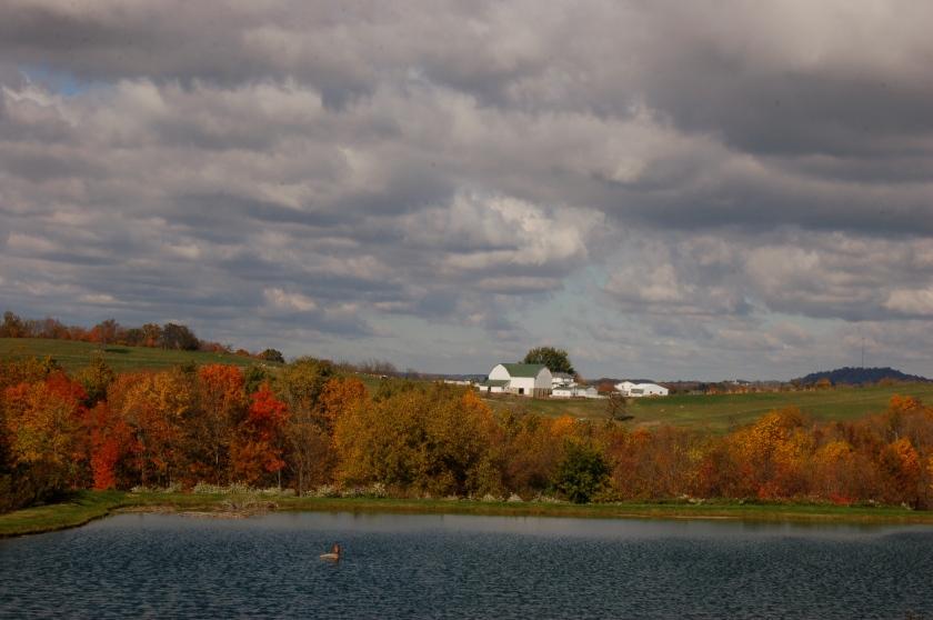 Fall scene by Bruce Stambaugh