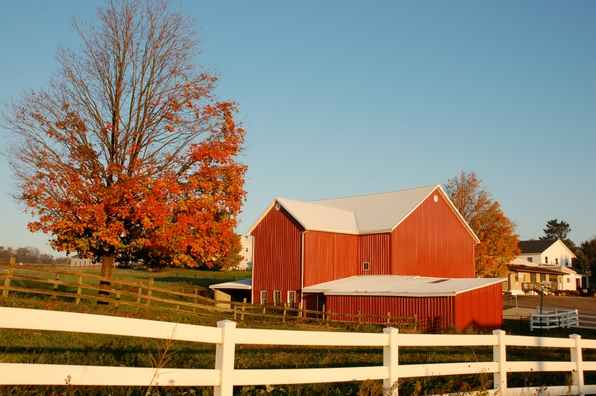 Red barn red tree by Bruce Stamaugh