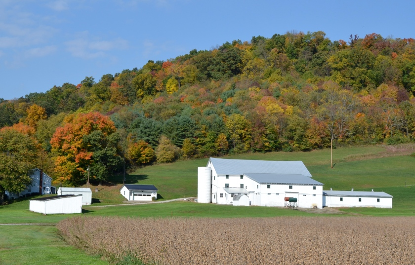 White farm by Bruce Stambaugh