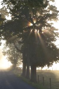 Sun rays by Bruce Stambaugh