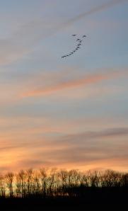 sunsetflyoverbybrucestambaugh