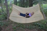 swingingonthehammockbybrucestambaugh