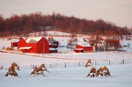 winterscenebybrucestambaugh
