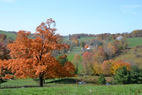 autumnofmylifebybrucestambaugh