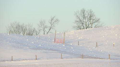 snowrollersbybrucestambaugh