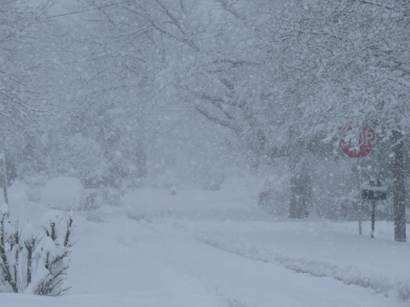 snowstormbybrucestambaugh