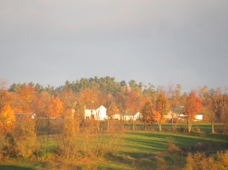 fall leaves, golden leaves, morning sunshine, Amish farmstead, Bruce Stambaugh