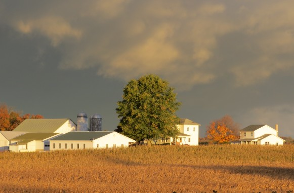 Amish farm, morning sun, Bruce Stambaugh