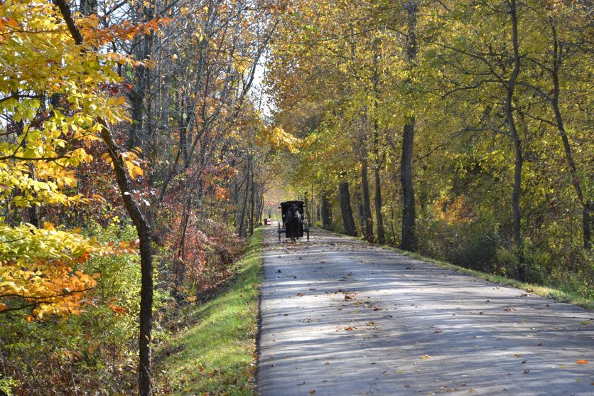 Colorful drive on the Holmes County Trail by Bruce Stambaugh