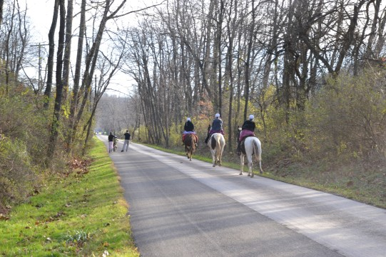 Horses on Holmes County Trail by Bruce Stambaugh