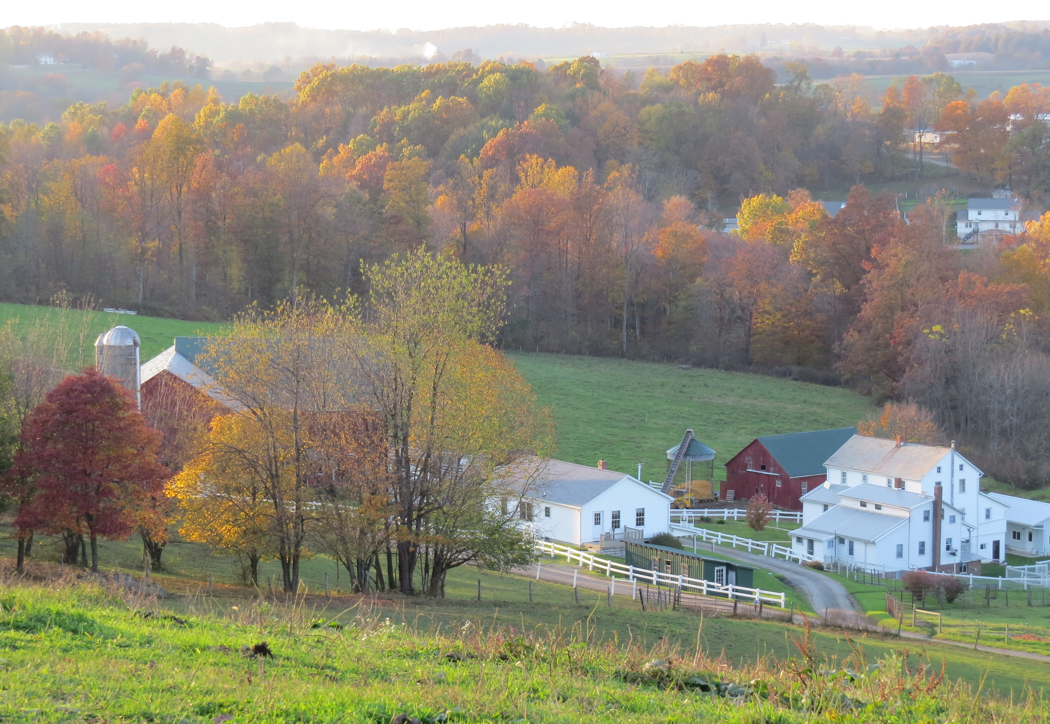 fall leaves, sunsets, fall colors, Ohio's Amish country