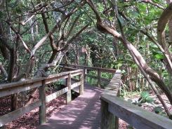 Selby Botanical Garden, Sarasota Florida